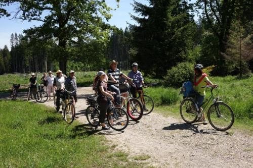 k-01-2019-06-Radltour-Forstenrieder-Park