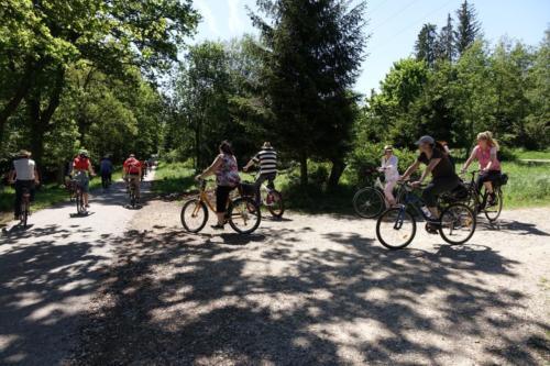 k-02-2019-06-Radltour-Forstenrieder-Park