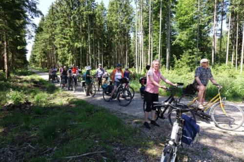 k-03-2019-06-Radltour-Forstenrieder-Park