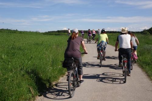 k-13-2019-06-Radltour-Forstenrieder-Park